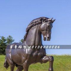 銅雕馬,公園仿真銅馬雕塑
