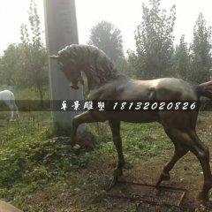 馬銅雕,公園動物銅雕