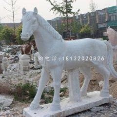 小馬駒石雕,漢白玉小馬駒石雕