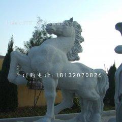 石雕馬,廣場動物石雕
