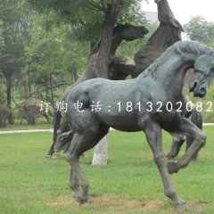 青銅馬雕塑公園動物銅雕