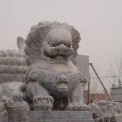 门口仿古狮子石雕