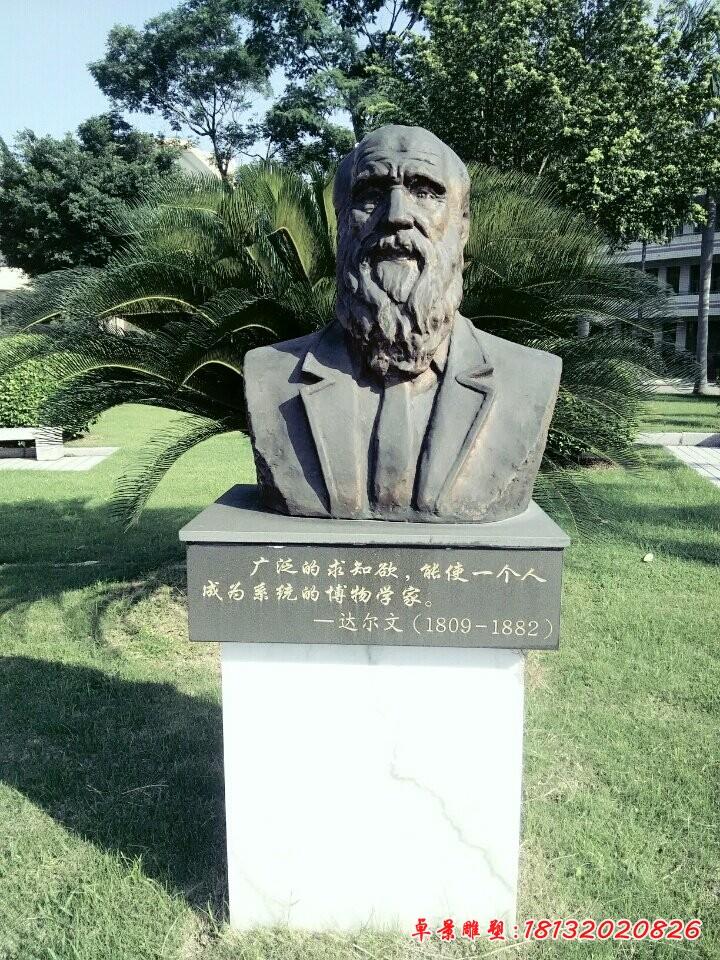 西方科学家达尔文铜雕