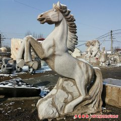 城市動物石雕馬